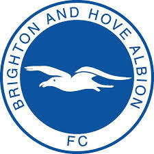 Brighton_and_hove_albion.jpg